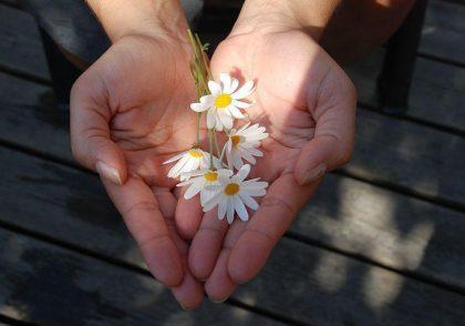 بخشش و هم وابستگی