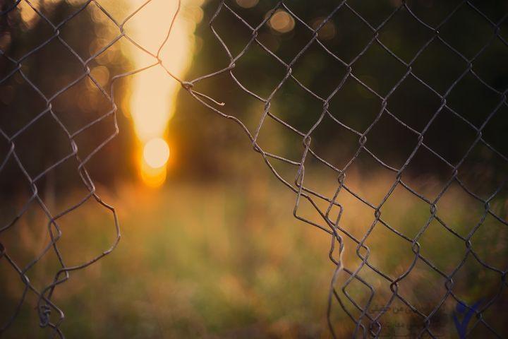 قفس را ترک کنید تا تغییر حاصل شود